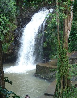 Anandale Falls, Grenada. Murky from the rains, but gorgeous.