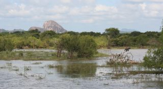 Elephant Rock & wetlands in Yala National Park