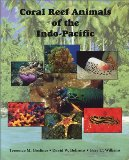 "Look at ""Coral Reef Animals of the Indo-Pacific "" on Amazon"