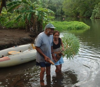 Daniel (of Daniel's Bay) and his granddaughter give us fresh taro
