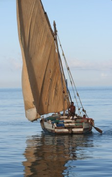 Small dhow off the coast