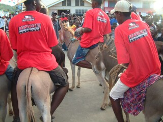The local donkey race was a free-for-all of hoofs and bare feet.
