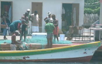 Gros Islet Fishermen bringing in the catch