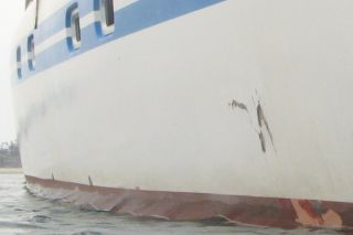 Whale damage to our hull, ~1' or 30cm across