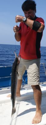 Jon lands a Blackfin barracuda