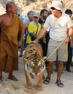 Jon walks a tiger out of the canyon, while laughing with the monk.
