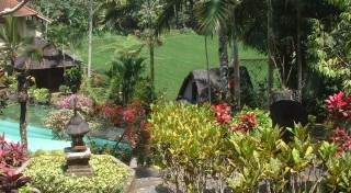 A beautiful garden and guest house in the Bali hills