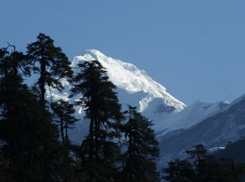 Mt. Pandim from Tsokha. Clear skies in Sikkim, India