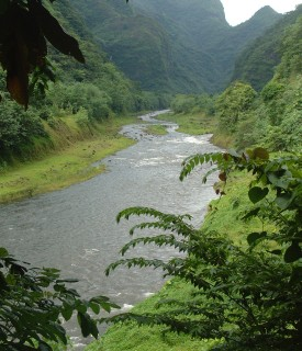 The Papenoo River road provides access to Tahiti's interior.