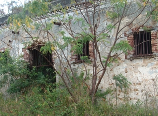 Prison ruins from the 1800's tell of the horrors of the penal colony