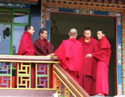Young monks at Rumtek Monastery, Sikkim, India