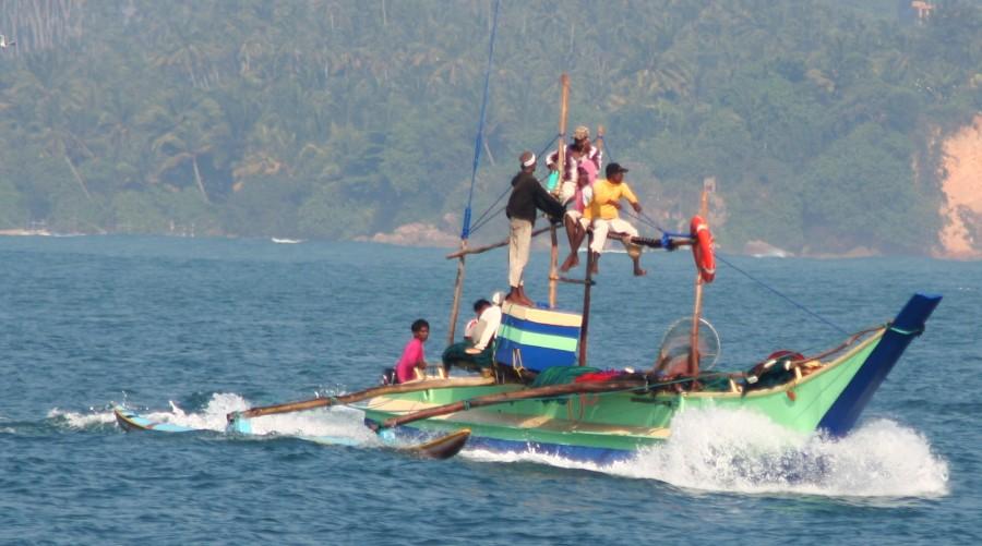 Indian ocean cruising for Sri lanka fishing