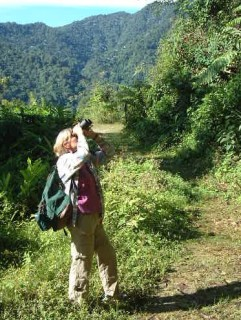 Sue birding in the Andean foothills. Cloudforest in the background.