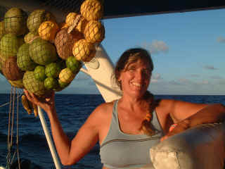 Our net of free fruit, collected in the Marquesas