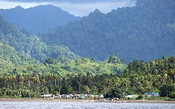 Small village under forested mountains, Sulawesi