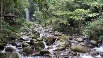 A lovely waterfall, deep in the Borneo rainforest.